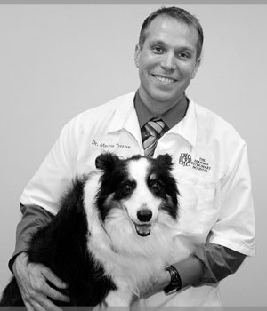 Dr. Martin Trerise - Parkway Veterinary Hospital